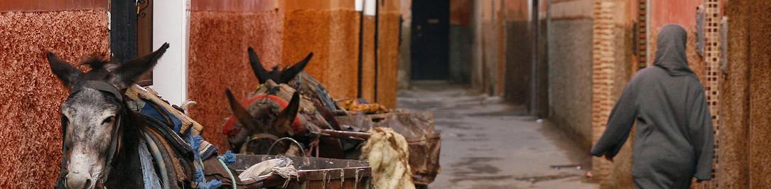 cropped-bigstock-Small-Street-In-Marrakech-s-Me-5843228.jpg