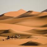 bigstock-Camel-trekking-at-Morocco-30664841