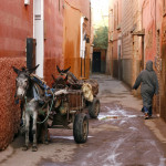 bigstock-Small-Street-In-Marrakech-s-Me-5843228