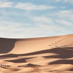 bigstock-dunes-texture-6775727